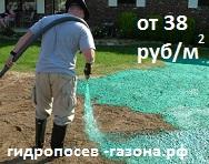 гидропосев газона 38 руб кв. метр