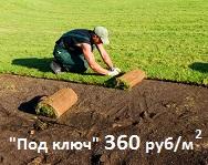 Рулонный газон под ключ 360 руб/м